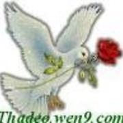 Thadeo - Free Online Music