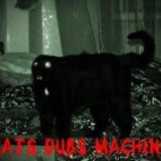 Cats Dubs Machine - Free Online Music