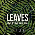 Opus vs. Leaves (Dimitri Vegas & Like Mike Mashup)