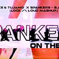 Laidback Luke & Tujamo X Spankers - S.A.X On The Beach (Lock /\ Loud MashUp)