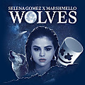 Wolves (Single Version)