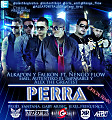 Perra (Official Remix) (MiFlow-Sofisticado