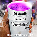 04.Jani Tumi (Love The Mash Up Mix) Dj shad
