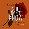 Meek Mill ft. Ty Dolla $ign – She Don't Know (CDQ)
