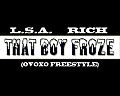LSA ft. RICH - The Boy Froze