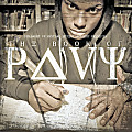 The Book Of Pavy