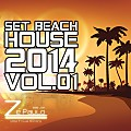 Set - Beach House 2014 Vol.01 - DJ Zé Paulo