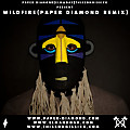 Wildfire feat. Little Dragon (Paper Diamond Remix)