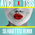Silhouettes (T$0$ Remix)