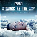 Netrum ft. Anni Kaakinen - Staring At The Sky