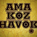HavoknatioN