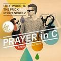 Lilly Wood & The Prick -Prayer in C (feat) Dj Wellington campos₢