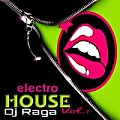 Electro House Vol.1 DJ RAGA