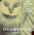 Diamonds (ft. Noah McClure) [prod. Relta]