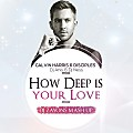 Calvin Harris & Disciples, Dj Anis, Dj Ness - How Deep Is Your Love (Dj Zayons Mashup)