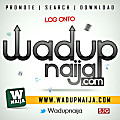 I No Fit Shout_Wadupnaija.com