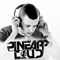 Pineapploud - Ready to Party (Radio Mix)