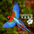 Protect My Y.A.R.D