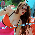 DJ SANKET - Zulmi Zulmi House Mix Dj Sanket