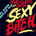 David Guetta feat. Akon - Sexy Bitch (The Mrho Bootleg Mix)