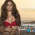 "EDM Dance Mix ""Summer 2013"""
