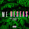Mike Roach x YL - Me Deseas - Mix 3 Lower Mix