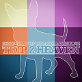 Trip 2 Heaven (Vocal Mix)