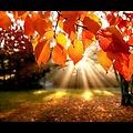 Mary Chapin Carpenter-Thanksgiving Song