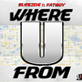 Sleezoe-Where u from ft Fatboy