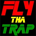 Official Mixtape #1 Preview FLY THA TRAP by Dj Fii x Syketronic x Goldkidz (TRAPSTEP REMIX)