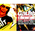 Calabash riddim mix 2013 feat: Kes, Shaggy,Wayne Wonder Konshens Gyptian Rayvon RedFox and more!