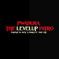 1.The levelup intro
