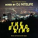 The Bling Ring Soundtrack Mixed by DJ NITELIFE