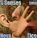 Nova McCoolin x Tico - 5 Senses.mp3